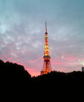 Pink_sunset